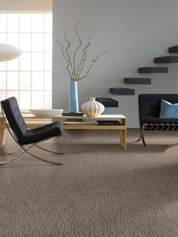 Carpet in columbia mo free estimates are available for Columbia laminate flooring customer reviews