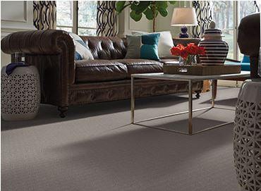 Pet Proof Carpeting Columbia Mo Dave Griggs Flooring